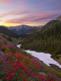 Badger Valley Sunrise  Olympic National Park  Washington  USA