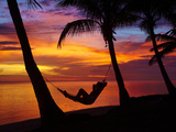 Woman in Hammock  and Palm Trees at Sunset  Coral Coast  Viti Levu  Fiji  South Pacific
