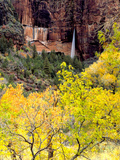 Ephemeral Waterfall  Zion National Park  Utah  USA