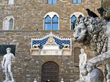 Palazzo Vecchio  Marzocco Lion and Statue of David  Piazza Della Signoria  UNESCO Heritage Site