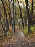 Trail to Great Bear and Little Bear Mound  Effigy Mounds National Monument  Iowa  USA