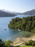 Whenuanui  Becks Bay  Marlborough Sounds  South Island  New Zealand