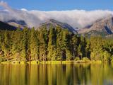 Reflections on Sprague Lake  Rocky Mountain National Park  Colorado  USA