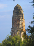 Wat Phra Ran  Ayutthaya Historical Park  Thailand