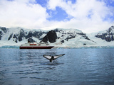 Cruise Ship Anchored in Neko Harbor  Gerlache Strait  Antarctic Peninsula  Antarctica