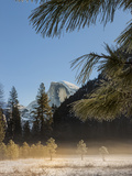 Half Dome from Valley Floor  Yosemite  California  USA