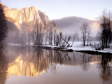 Early Morning Misty Colors in the Valley  Yosemite  California  USA