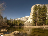 El Capitan Towers over Merced River  Yosemite  California  USA