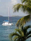 Catamaran  St John  United States Virgin Islands  USA  US Virgin Islands  Caribbean