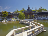 Chinese Gardens  Dunedin  Otago  South Island  New Zealand