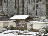 Portland Japanese Garden with a Rare Snow  Oregon  USA