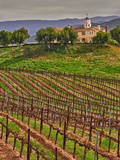 Leoness Cellars  Temecula  California  USA