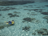Snorkelers and Reef  Green Island  Great Barrier Reef Marine Park  North Queensland  Australia