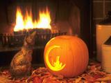 Halloween-Themed Cat and Jack-O-Lantern Image