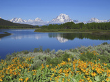 Grand Tetons from the Oxbow  Grand Teton National Park  Wyoming  USA