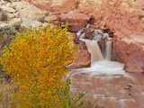 Waterfall  Capitol Reef National Park  Utah  USA