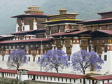 Punakha Dzong Palance  Bhutan