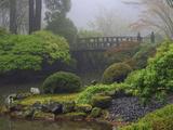 Fog  Portland Japanese Garden  Portland  USA  Oregon