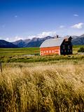 Red Barn in Field Near Joseph  Wallowa County  Oregon  USA