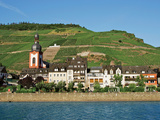 The Village and Vineyards of Zell  Germany