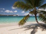 Tranquil White Sand Beach  St John  United States Virgin Islands  USA  US Virgin Islands  Caribbean