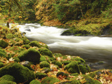 Sandy River in Autumn  Welches  Oregon  USA