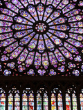 A Rose Window in Notre Dame Cathedral  Paris  France