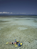 Snorkelers  Green Island  Great Barrier Reef Marine Park  North Queensland  Australia