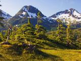 Mountain Landscape  Alaska  USA
