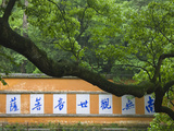 Screen Wall at the Entrance  Guoqing Buddhist Temple  Tiantai Mountain  Zhejiang Province  China