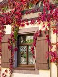 Colditz  Germany