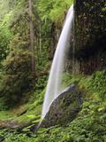 North Falls  Silver Falls State Park  Oregon  USA