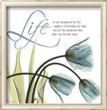 Swaying Tulips Blue  Life