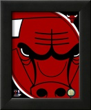 Chicago Bulls - Chicago Bulls Team Logo
