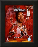 Derrick Rose 2011 Portrait Plus