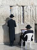 Jewish Quarter of Western Wall Plaza  People Praying at Wailing Wall  Old City  Jerusalem  Israel