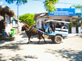 Cidomo  a Horse and Cart on Gili Trawangan  Gili Islands  Indonesia  Southeast Asia  Asia