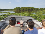 Air Boating in the Everglades  UNESCO World Heritage Site  Florida  USA  North America