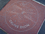 Celine Dion&#39;s Star on Sidewalk  Canada&#39;s Walk of Fame  Toronto  Ontario  Canada