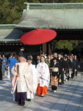 Shinto Wedding Procession at the Meiji Jingu Shrine  Tokyo  Japan  Asia