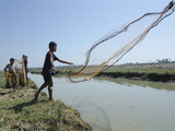 Youngsters Fishing with Net in Waterway  Irrawaddy Delta  Myanmar (Burma)  Asia