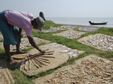 Fisherman Spreading Fish Catch in the Sun for Drying  Irrawaddy Delta  Myanmar (Burma)  Asia