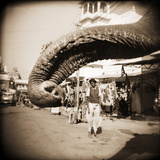 Elephant Trunk at Indian Bazaar