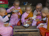 Young Novice Nuns Having their Breakfast in the Streets of Yangon  Myanmar (Burma)  Asia
