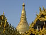 Stupa at Shwedagon  Yangon  Myanmar (Burma)  Asia
