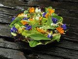 Organic Salad with Edible Flowers  Philippines  Southeast Asia  Asia
