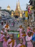 Young Nun Novices in Front of the Eastern Entrance to Shwedagon  Yangon  Myanmar (Burma)  Asia
