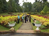 Visitors in the Royal Botanical Garden  Peradeniya  Kandy  Sri Lanka  Asia