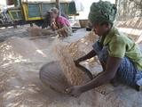 Production of Shrimp Powder in a Fish Farm  Irrawaddy Delta  Myanmar (Burma)  Asia