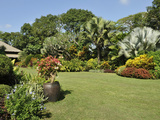 A Tropical Garden with Colorful Borders around a Large Lawn  Philippines  Southeast Asia  Asia